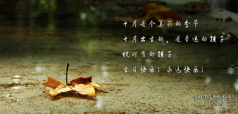 十月是你的生日中国简谱