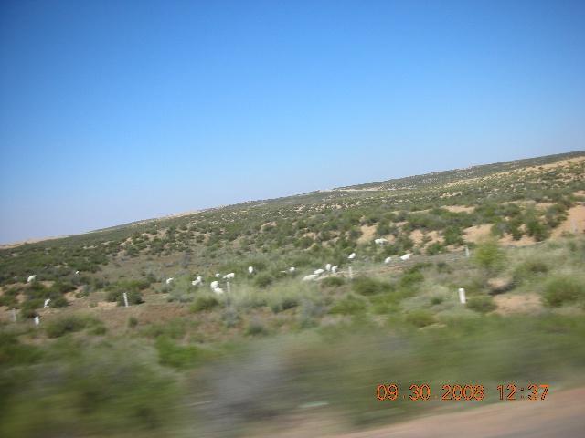 绕道鄂尔多斯,穿过鄂尔多斯大草原。 其实宏伟:广袤,就是这个感觉,可以理解为什么从这里出来的人那样的大气! 在这个地方好,很有意思。一般的旅游的人不能体会这种气势。可惜相机不能照太远、太广的景色,照片不能反映出眼睛看到的!