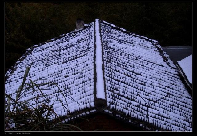 雪,将瓦片盖得若隐若现,远远的看上去,像一本将要合上的书本.