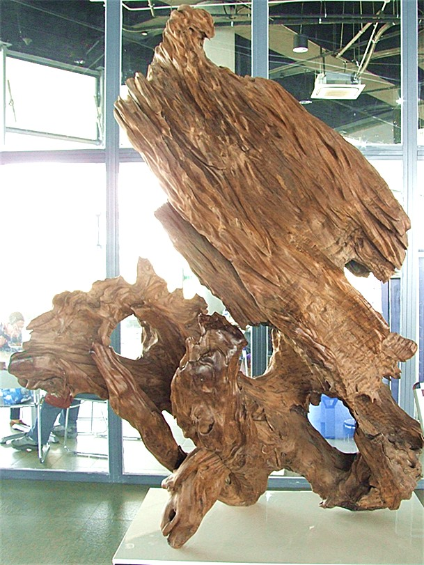 树根雕(图片)