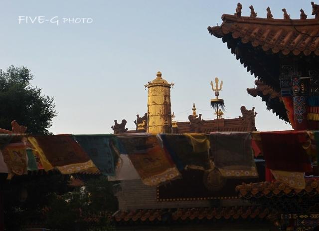 呼和浩特大昭寺