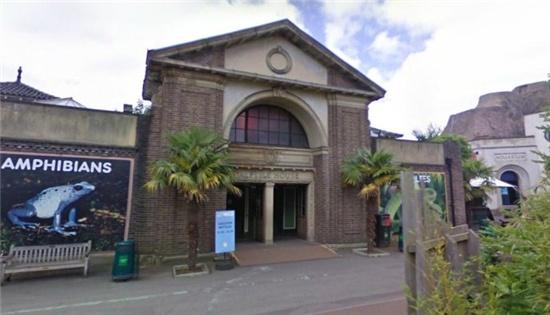 伦敦动物园——哈利与蟒蛇聊天的爬虫馆
