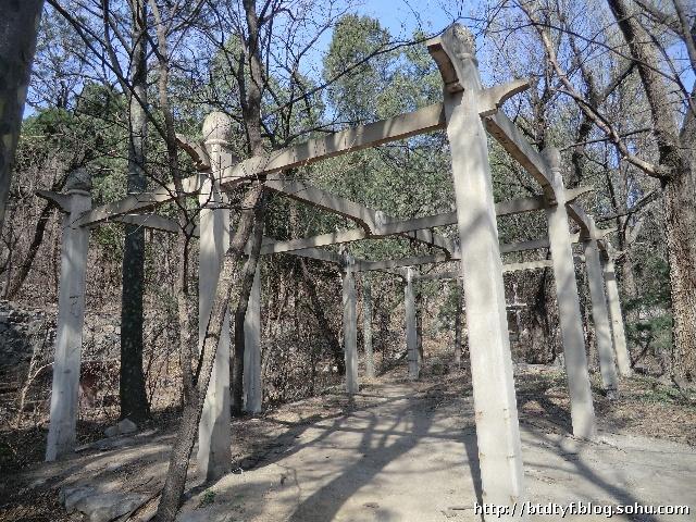 院中栽有冬青树数棵,带秋千挂环的水泥葡萄架,喷泉水池,石桥等园林